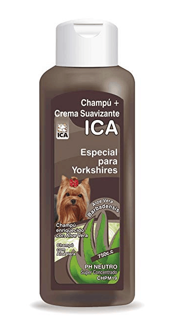 ICA CHPM19 - Champú con Aloe vera para Yorkshire