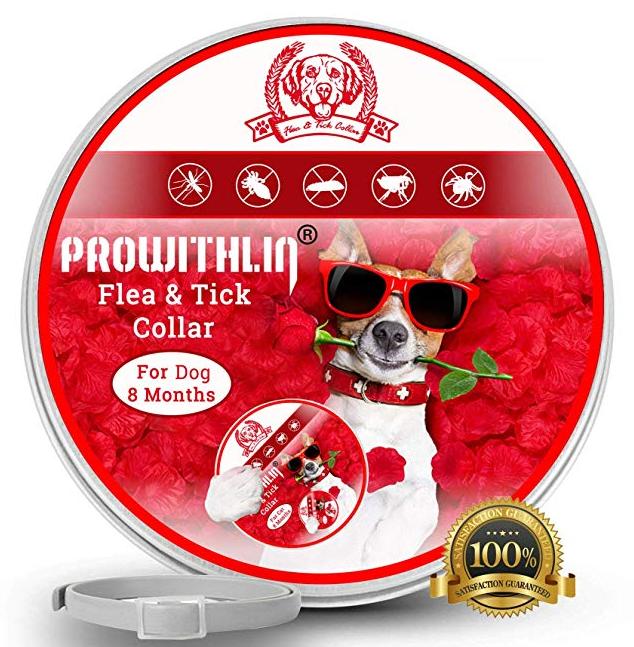 Prowithlin - Collar antiparasitario para perros